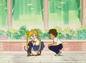 Sailor Moon: Serena, Luna and Melvin