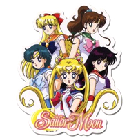 sailor moon group sticker