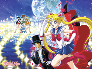 sailor moon group moon kingdom wallscroll