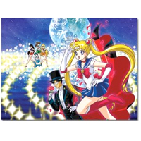 sailor moon puzzle